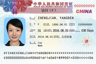 Visa to China 33x48 mm (3,3 x 4,8 cm)