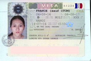 Visa to France 35x45 mm (0,35x0,45 cm)