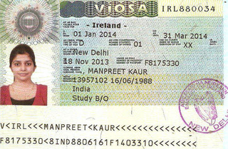 Visa to Ireland 35x45 mm (3,5x4,5 cm)